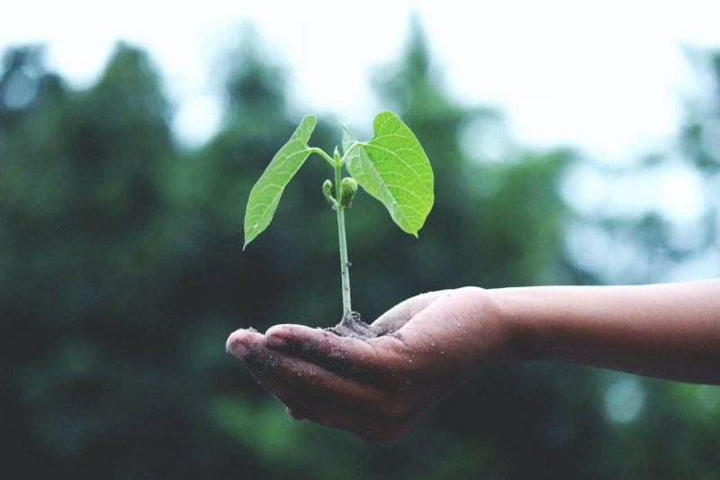 5 manieren om duurzaam te beleggen